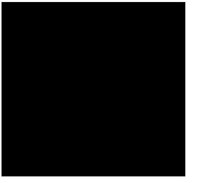 chigon
